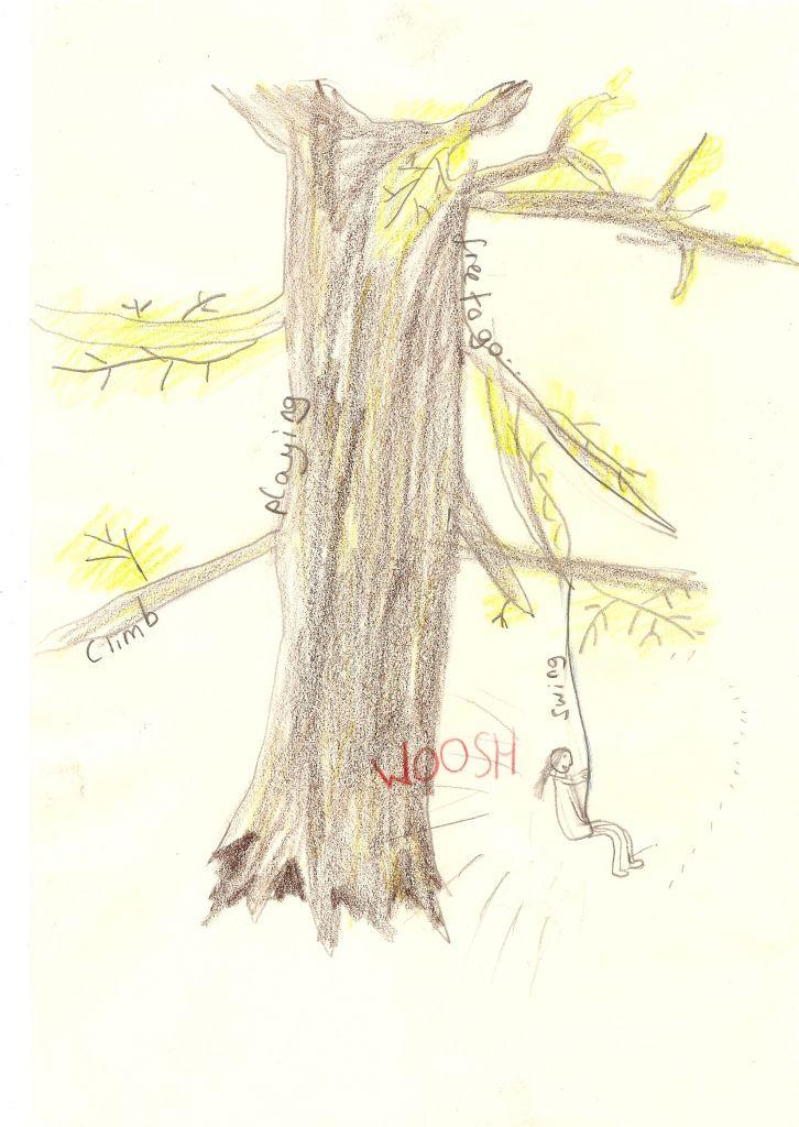 folly wood 29 07b 14